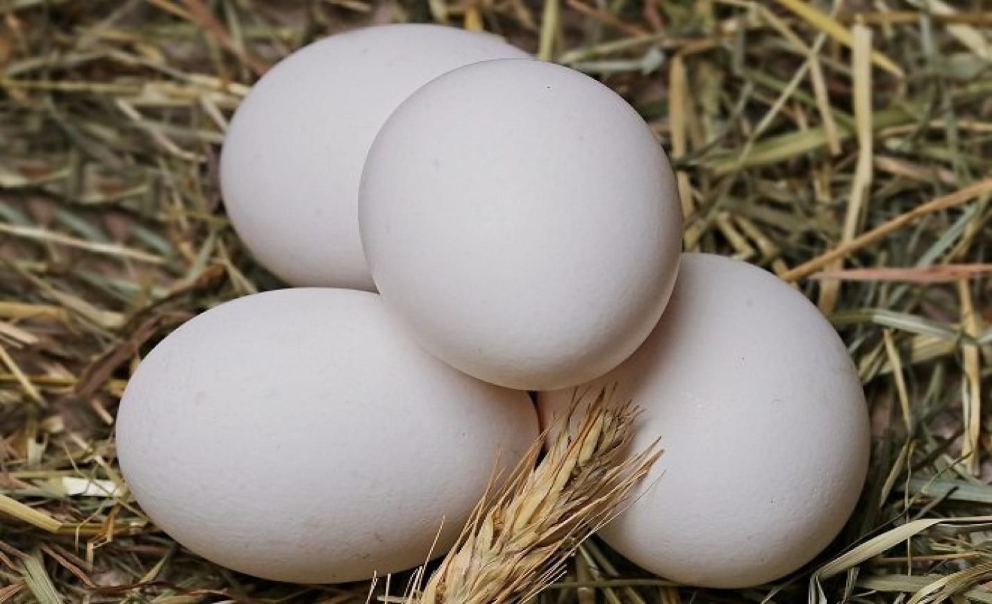 FM: elindult a tavaszi szezonális élelmiszerlánc-ellenőrzés