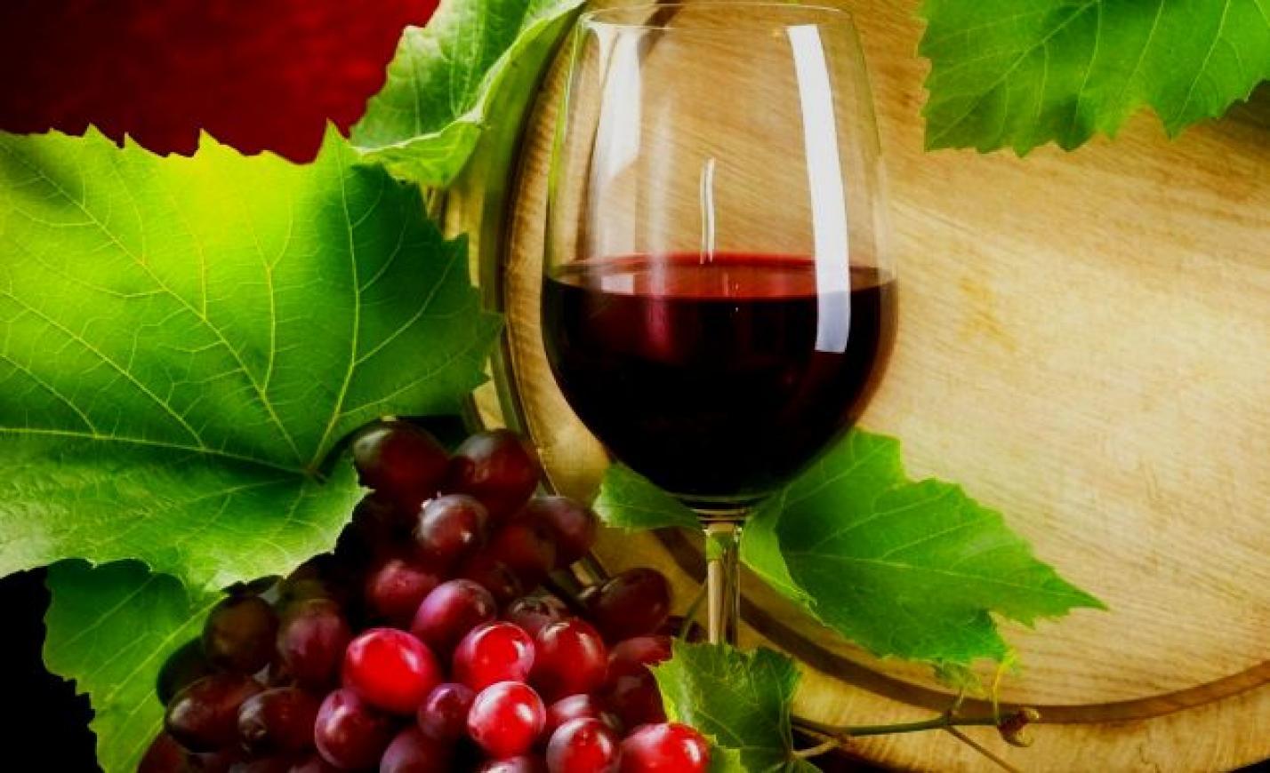 Minőségi borok az áruházak polcain