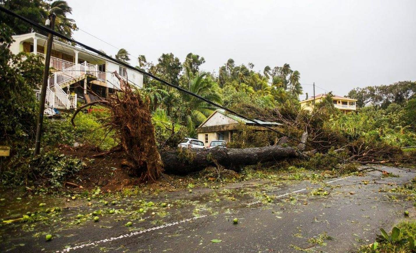 Van halálos áldozata a Maria hurrikánnak