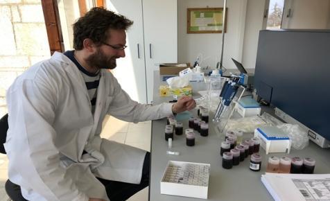 Tudja, mi történik, ha összeeresztik a mágneses magrezonancia spektroszkópiát a magyar borokkal?