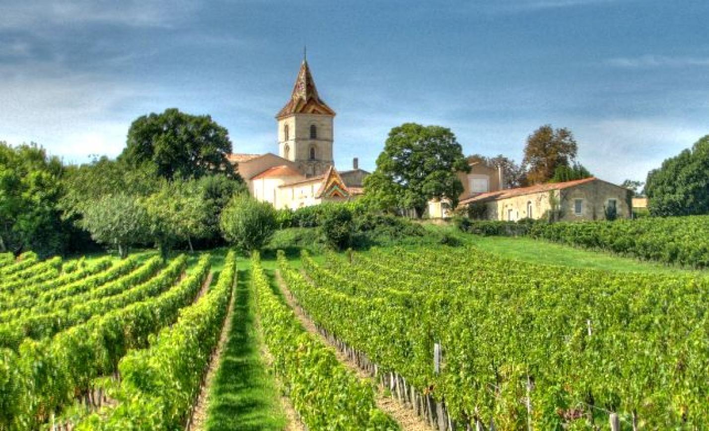 Francia szőlőbirtokokat vásárolnak a kínaiak