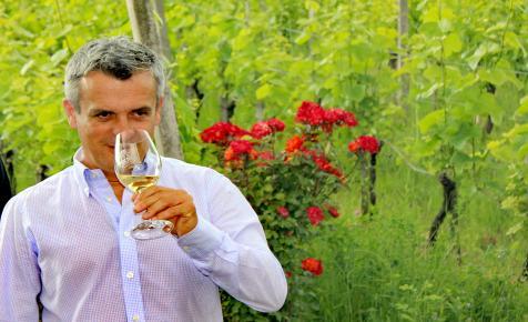 Úttörővasutasból bortermelő