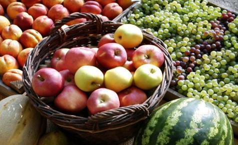 Nagy István: a következő gyümölcsszezonra többéves szerződési konstrukciót dolgoz ki az agrártárca
