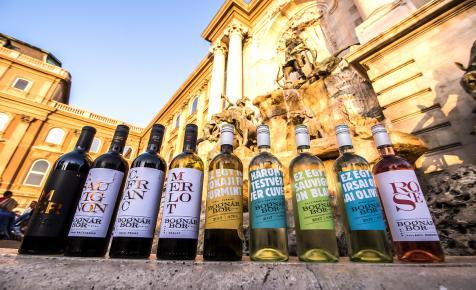 Ez alapján választanak borokat a magyarok