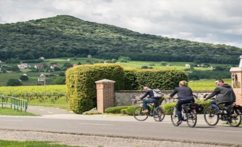 Kiránduld körbe a Villányi borvidéket! Őszi kerékpártúra a dűlők között