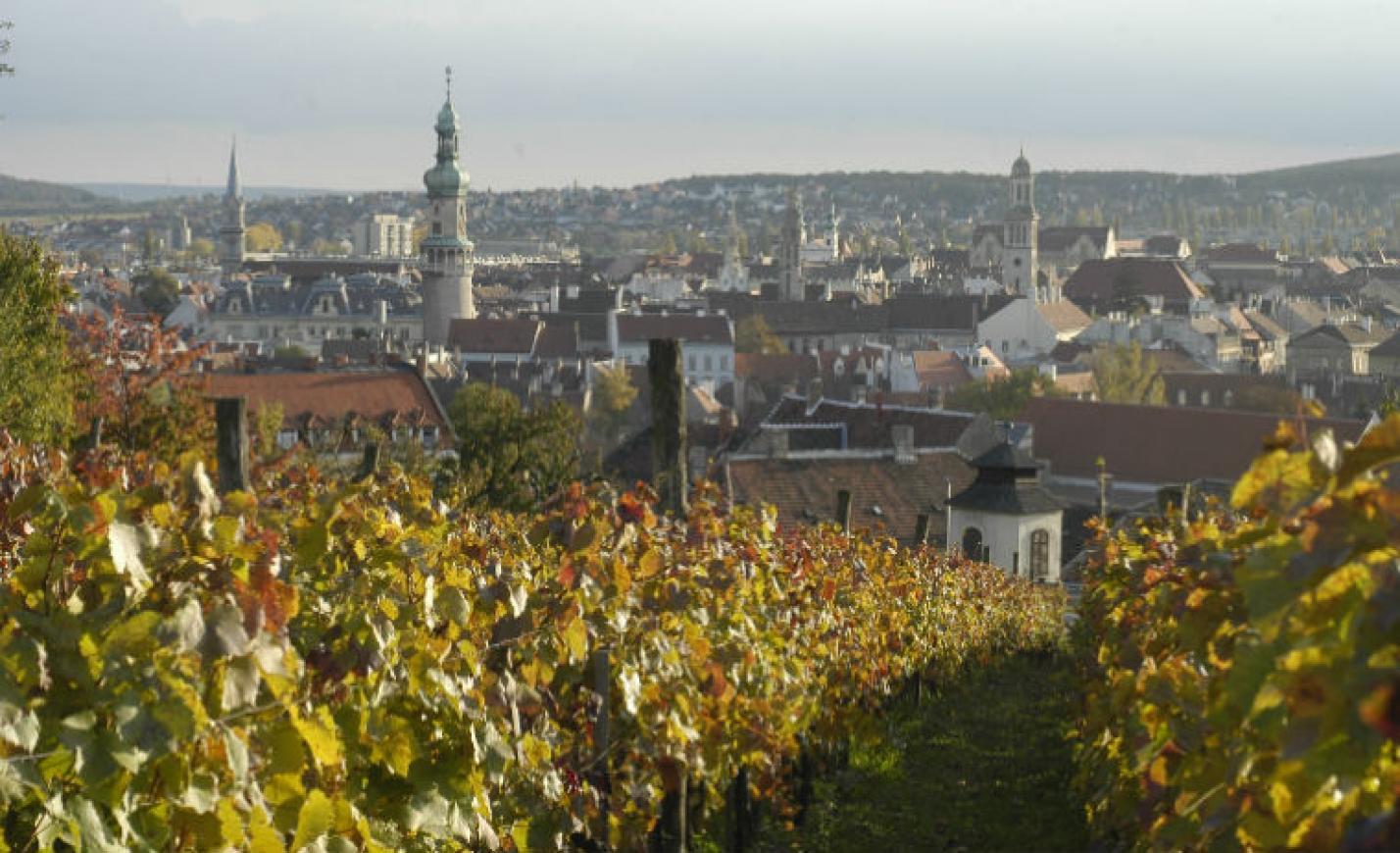 Új kezdet: Sopron 2.0