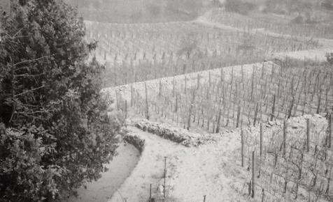 Na vajon melyik borvidékünkön esett le az első hó? - FÉNYKÉP