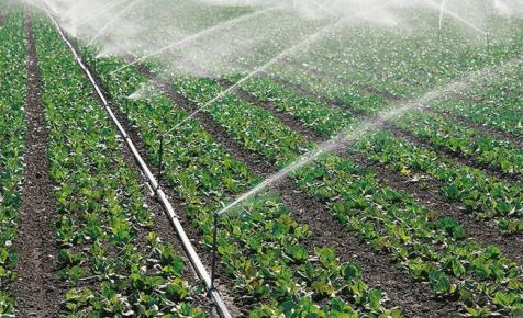 Nagy István: 2019 az építés éve lesz a mezőgazdaságban