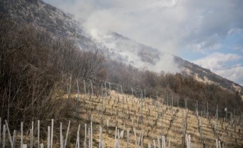 Fotókon a villányi bozóttűz: hatalmas területen ég az aljnövényzet