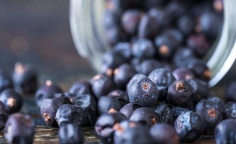 Itt az új hungarikum? Készül az első magyar kézműves gin