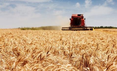 Rekordévet zárt tavaly a mezőgazdasági géppiac