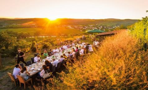 Több mint 100 kalandos borút a Zöldveltelinitől a Rizlingig