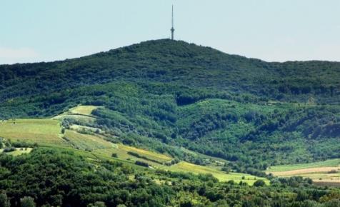 Öt milliárdból épített közösségi borászatot a Mészáros Lőrinchez köthető Opus
