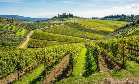 Sokkoló jelentés: eltűnhet a világ bortermelő vidékeinek több mint a fele