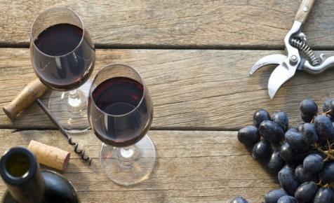 Milliárdos támogatás a magyar borágazatnak: mutatjuk, mikortól lehet pályázni a pénzre