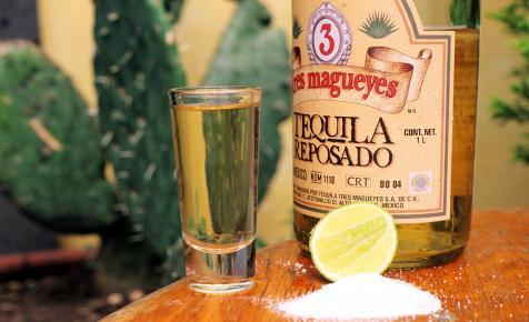 A tequila alapanyagából készítenének bioüzemanyagot