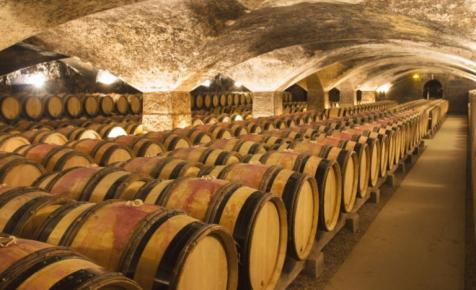 Több száz millióból fejlesztett Magyarország egyik legnagyobb szőlőfeldolgozója