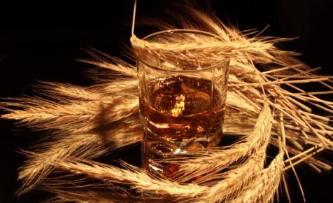 A brit tudósok megcsinálták: ebből a növényből készülhet a jövő whiskyje
