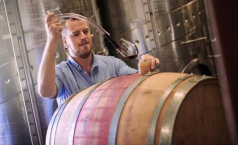 Ne csak termeld, add is el: Banki szemmel a borászati beruházásokról