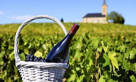 Beaujolais - Igyunk újbort november harmadik csütörtökének reggelén!