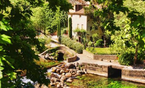 Csipetnyi Provence költözött Amerikába