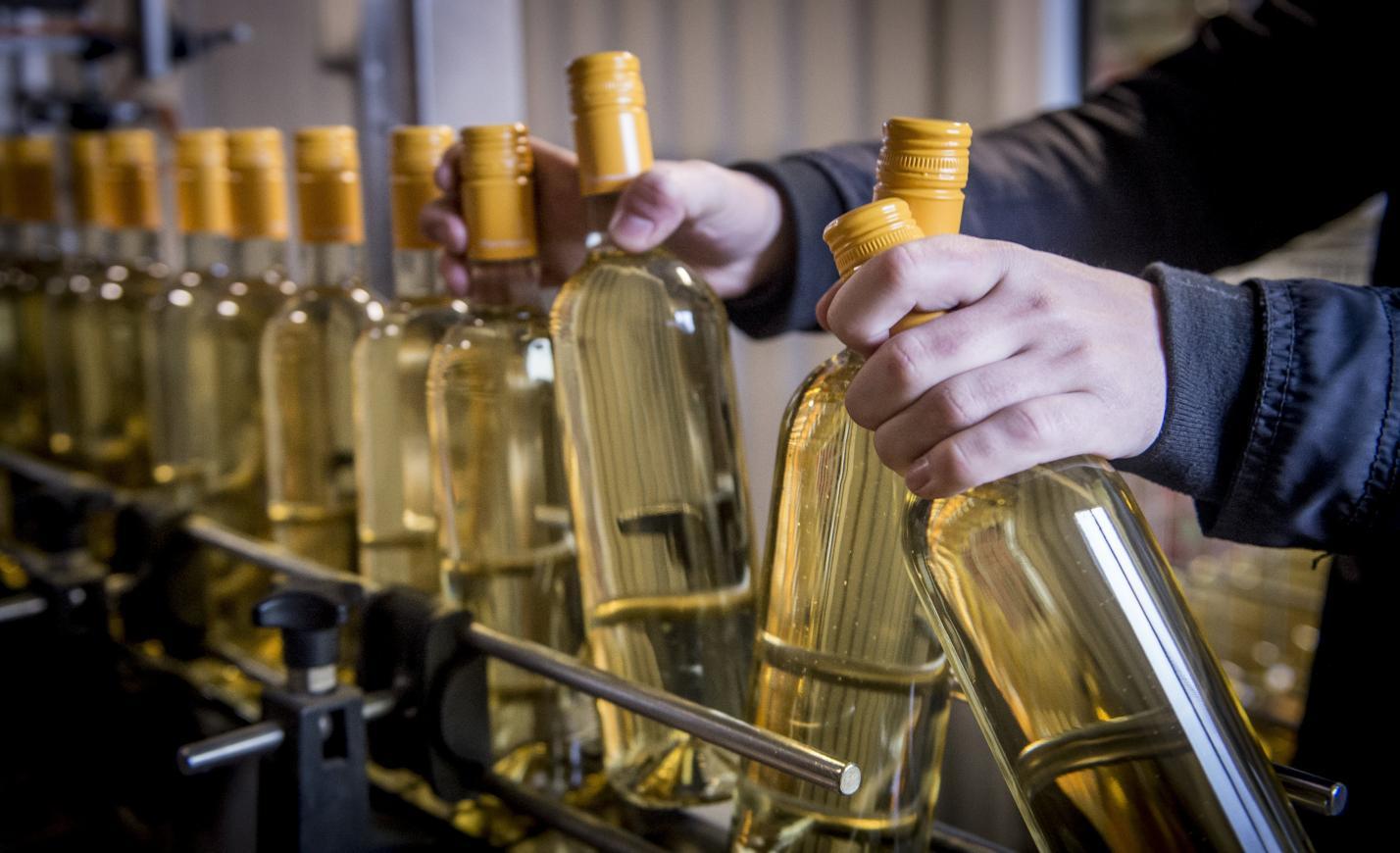 Oltalom alatt a Soltvadkerti borok