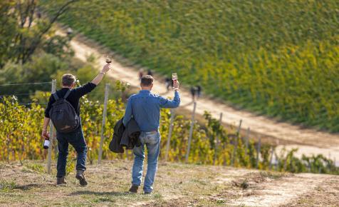 Megváltoztatta a vírus a borturizmust