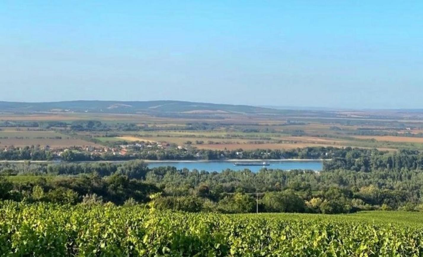 Szokatlan kampányt indít Magyarország egyik legnagyobb borászata