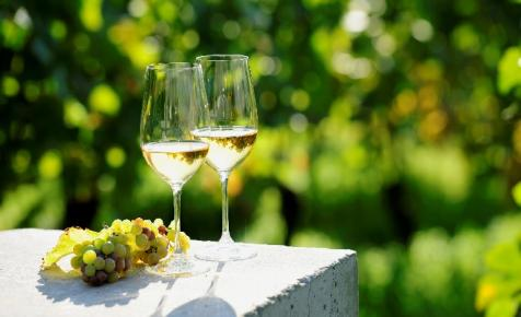 Így jelölhetik mostantól a sümegi borokat: óriási változás jöhet az idei szüret után