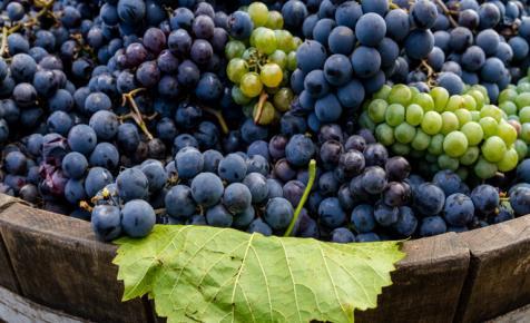 Egyre több magyar issza ezeket a borokat: rohamosan terjed az új trend az országban
